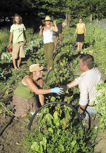 "Participants greet each other at a ""weed dating"" event at the Earthly Delights Farm are shown gardening in Boise, Idaho on Thursday, June 28, 2012. The farm is among a handful across the country offering this unconventional form of speed dating, where singles meet while working together in the fields. The payoff for their toil? A chance at romance. (AP Photo/Jessie L. Bonner)"