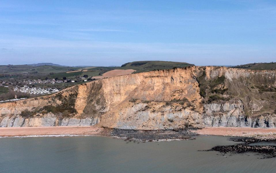 The seven foot remainswere dug up on Dorset's Jurassic coast