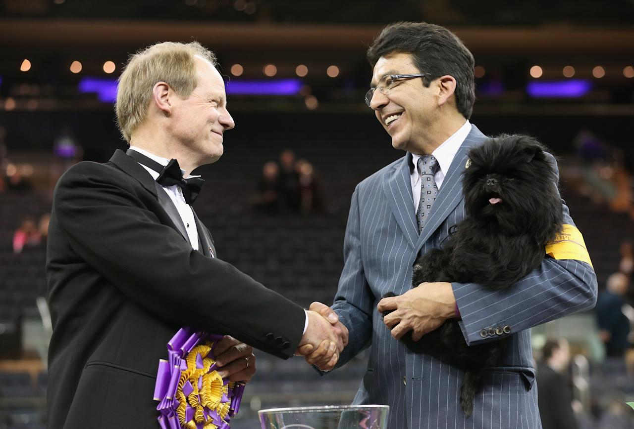 NEW YORK, NY - FEBRUARY 12:  Best in Show judge Michael Dougherty (L), congratulates dog handler Ernesto Lara after his dog Banana Joe, an Affenpincher, won the 137th Westminster Kennel Club Dog Show on February 12, 2013 in New York City.  A total of 2,721 dogs from 187 breeds and varieties competed in the event, hailed by organizers as the second oldest sporting competition in America, after the Kentucky Derby.  (Photo by John Moore/Getty Images)