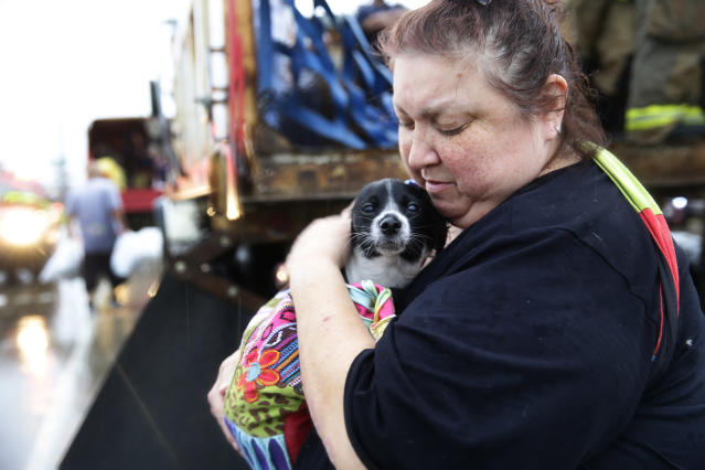 <p>Elma Moreno comforts her dog, Simon as they are loaded on to a trucks after being evacuated from their flooded apartment. (Photo: Robert Gauthier/Los Angeles Times via Getty Images) </p>