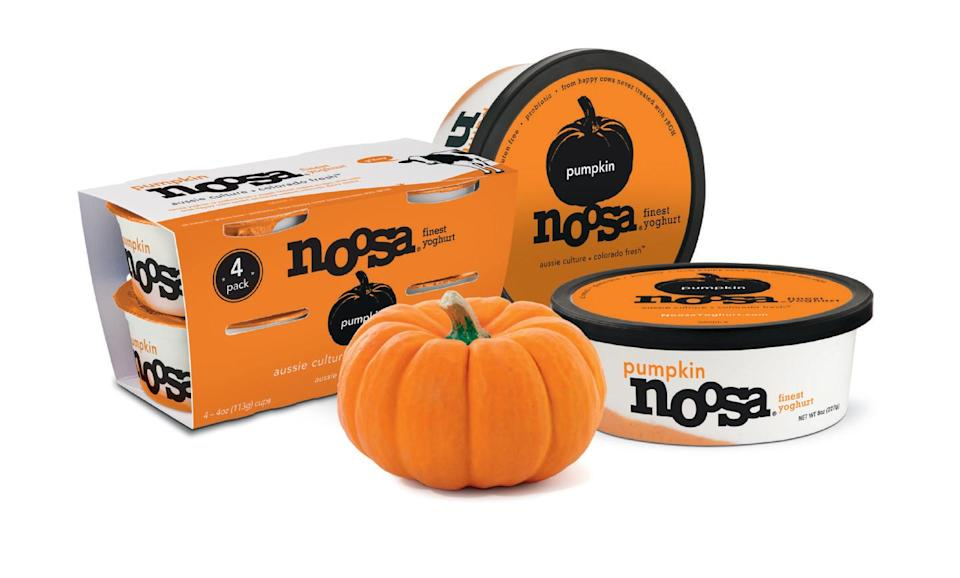 "<p>Find it in stores near you <a href=""https://www.noosayoghurt.com/product/pumpkin/"" rel=""nofollow noopener"" target=""_blank"" data-ylk=""slk:here"" class=""link rapid-noclick-resp"">here</a>!</p>"