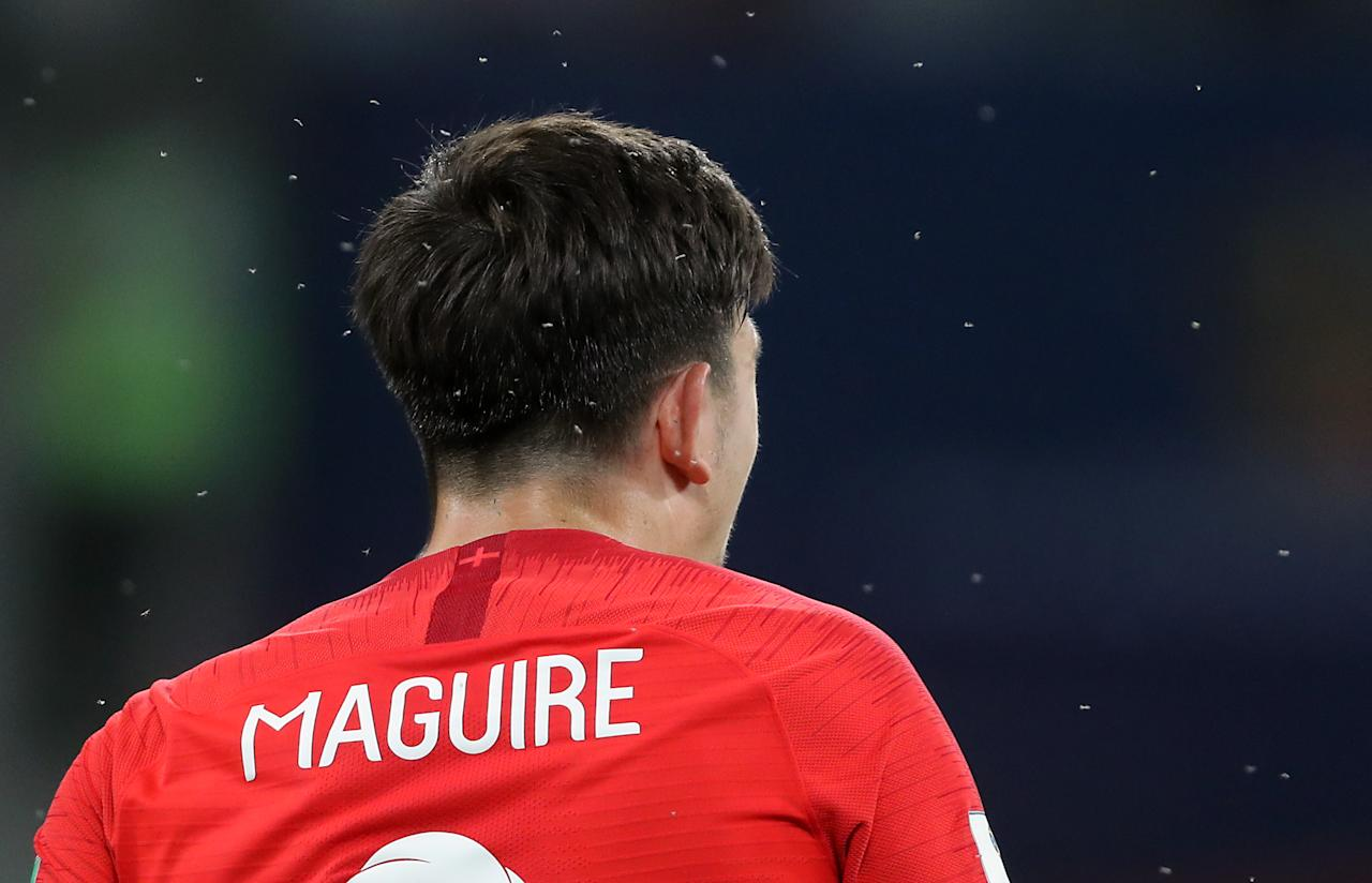 <p>England's Harry Maguire surrounded by insects during the FIFA World Cup Group G match at The Volgograd Arena, Volgograd. (Photo by Owen Humphreys/PA Images via Getty Images) </p>