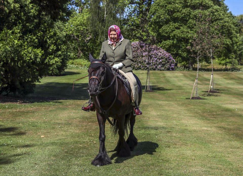 <p>Riding Balmoral Fern, a 14-year-old Fell Pony, on the grounds of her Windsor Castle home.</p>