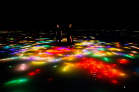 teamLab Planets, a Museum Where You Move Through Water in Toyosu, Tokyo, Is Currently a Space for Autumn. The Carp Swimming on the Water's Surface Change into Autumn Leaves When They Collide with Visitors.