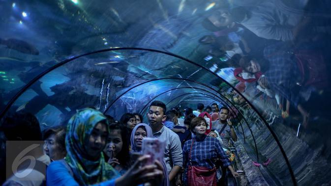 Sea World Ancol (Liputan6.com/Faizal Fanani)
