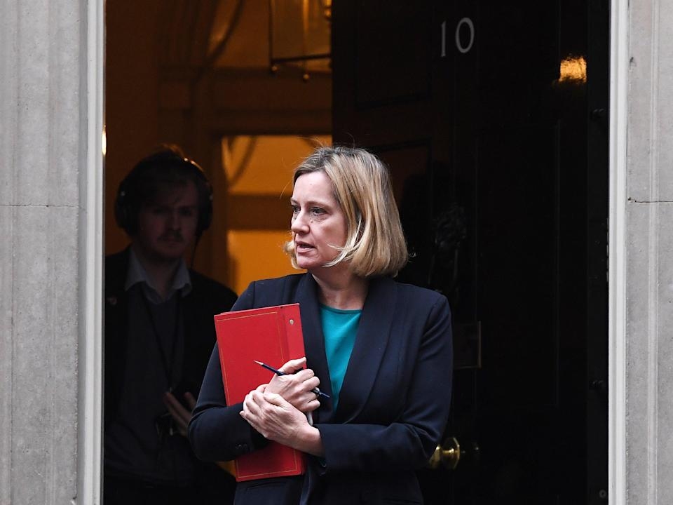 Former secretary of state for climate change Amber Rudd led the UK delegation at the Paris agreement (EPA)