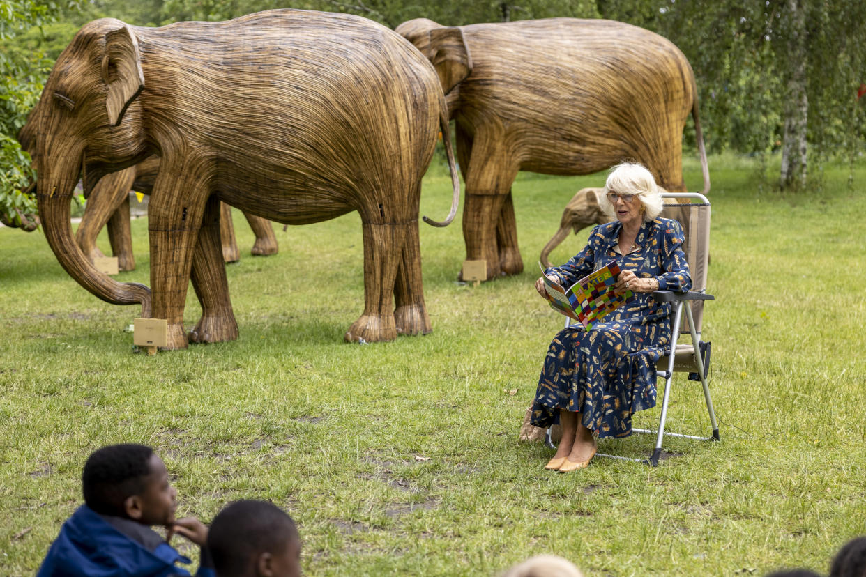 LONDON, ENGLAND - JUNE 22: Camilla, Duchess of Cornwall, Patron of the National Literacy Trust and Joint President of Elephant Family, reads Elmer as she launches their Story Trail at a picnic with school pupils, alongside the elephant sculptures recently installed in St James's Park on June 22, 2021 in London, England. (Photo by WPA Pool/Getty Images)