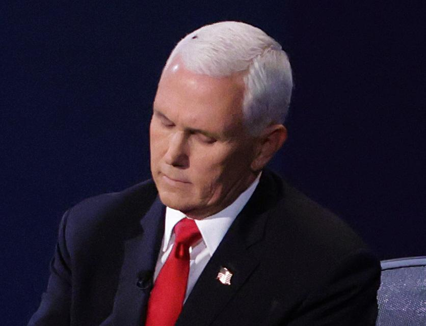 SALT LAKE CITY, UTAH - OCTOBER 07: A fly briefly lands on head of U.S. Vice President Mike Pence during in the vice presidential debate against Democratic vice presidential nominee Sen. Kamala Harris (D-CA) at the University of Utah on October 7, 2020 in Salt Lake City, Utah. The vice presidential candidates only meet once to debate before the general election on November 3. (Photo by Alex Wong/Getty Images)