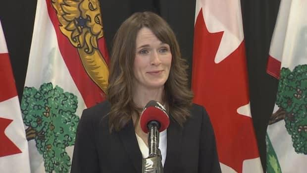 Education Minister Natalie Jameson says despite being a new to the portfolio, she is taking the issue of racism in P.E.I. schools very seriously.  (Rick Gibbs/CBC - image credit)