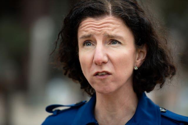 Labour Party chair Anneliese Dodds