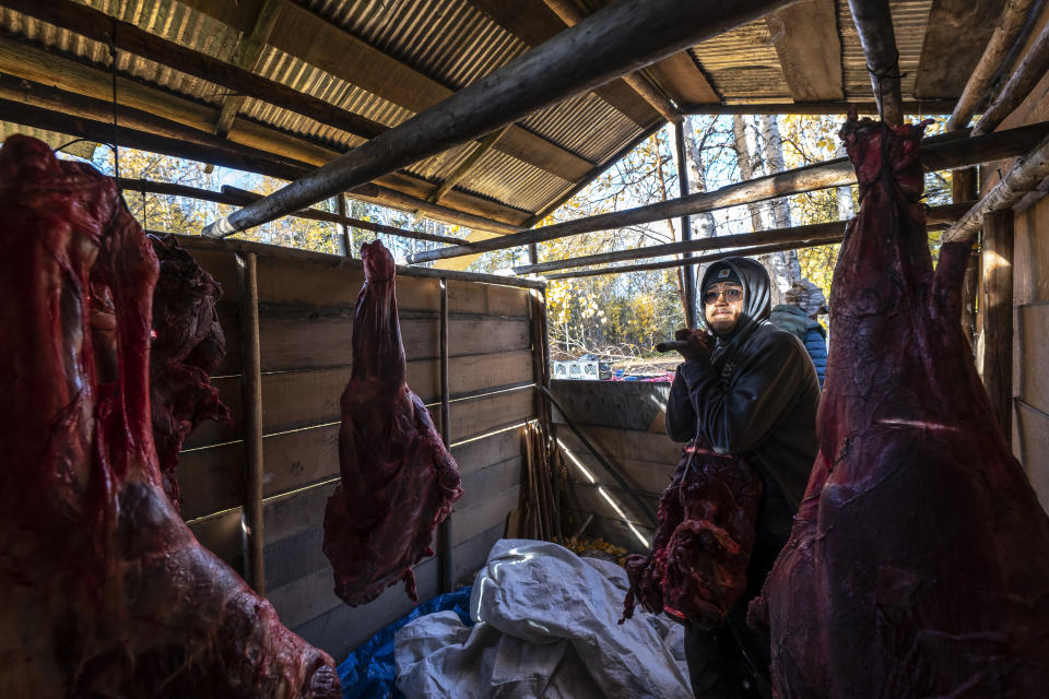 Bernard Ishnook moves butchered moose meat into the smokehouse of village elder Harold Simon, 81, on Wednesday, Sept. 15, 2021, in Stevens Village, Alaska. For the first time in memory, both king and chum salmon have dwindled to almost nothing and the state has banned salmon fishing on the Yukon. The remote communities that dot the river and live off its bounty are desperate and doubling down on moose and caribou hunts in the waning days of fall.(AP Photo/Nathan Howard)