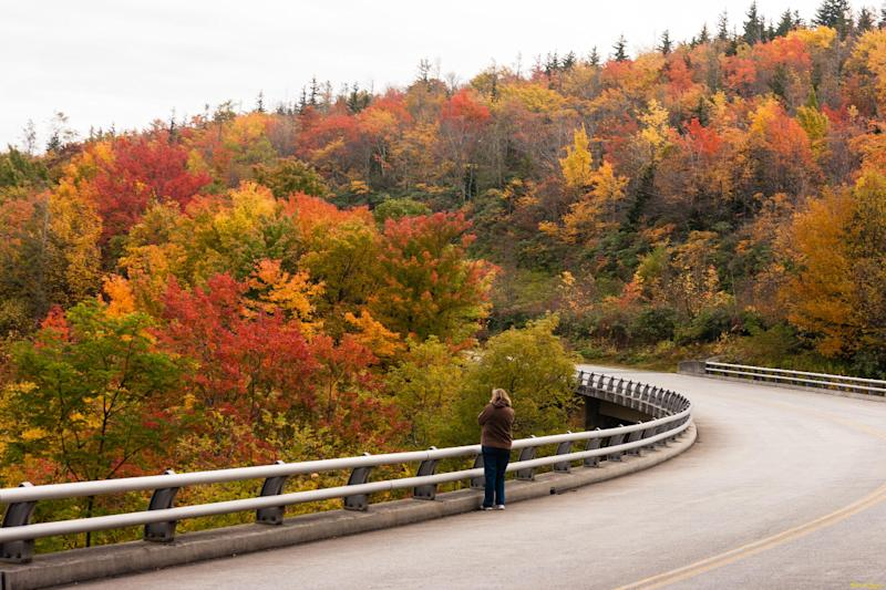 In this Oct. 17, 2013 photo provided by Grandfather Mountain a woman stops to take a photo of the fall foliage along the bridge over Green Mountain Creek on the Blue Ridge Parkway near Grandfather Mountain in Linville, N.C. While colors in the northern, higher elevations of South Carolina are still emerging, trees are exploding with color at the upper elevations in western North Carolina. (AP Photo/Grandfather Mountain, Monty Combs)