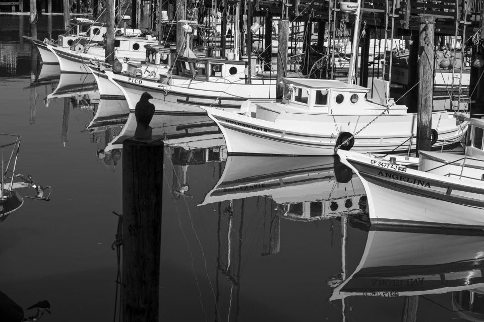 Felucca fishing boats are tied up at Fisherman's Wharf in San Francisco on April 24, 2020. Normally, the months leading into summer bring bustling crowds to the city's famous landmarks, but this year, because of the coronavirus threat they sit empty and quiet. Some parts are like eerie ghost towns or stark scenes from a science fiction movie. (AP Photo/Eric Risberg)