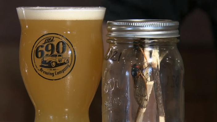 A brewery in Virginia created a cicada beer and named it Brewd-X. / Credit: CBS News