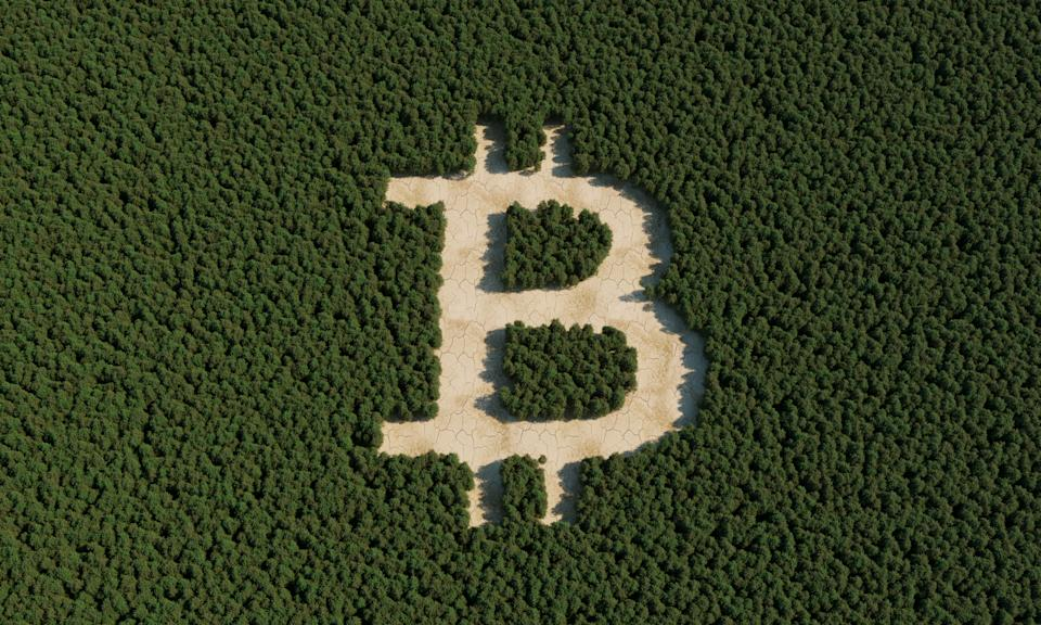 Deforestation with bitcoin sign. (3d render)