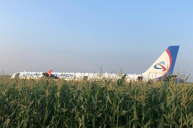 The Ural Airlines A321, carrying 226 passengers and seven crew, came down in a corn field (AFP Photo/HO)