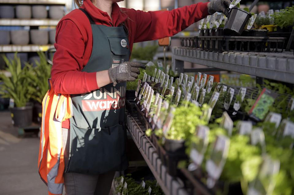 An employee arranges plants on display in the garden centre of a Bunnings Warehouse store.