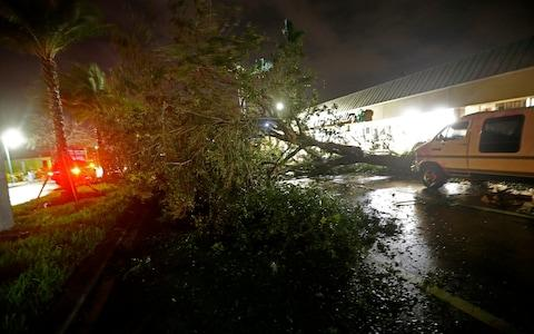 A downed tree lies across Cape Coral Parkway during Hurricane Irma in downtown Cape Coral, Florida - Credit: AP