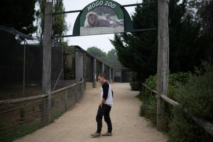 Director of Mogo Zoo Chad Staples makes his way at the zoo in Australia