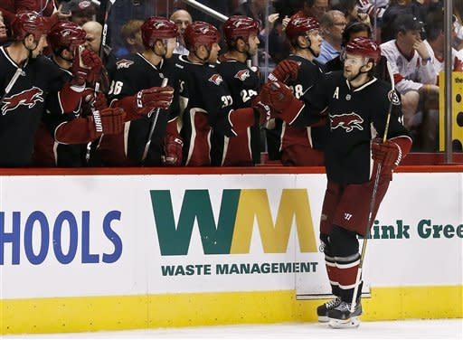 Phoenix Coyotes' Martin Hanzal, of the Czech Republic, celebrates his goal against the Detroit Red Wings with teammates in the first period during an NHL hockey game, Monday, March 25, 2013, in Glendale, Ariz. (AP Photo/Ross D. Franklin)