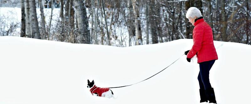 Woman and dog in matching red jackets walking in snow after winter storm in Minnesota.