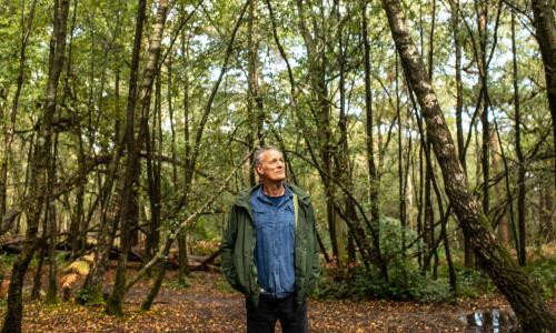 Walking in an autumn wonderland: how I found awe in deepest Surrey