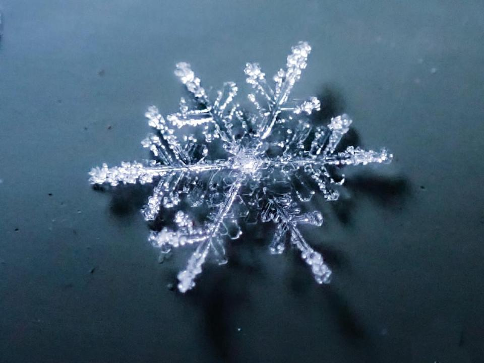 Snowflake 4: Courtesy of Kyle Brittain
