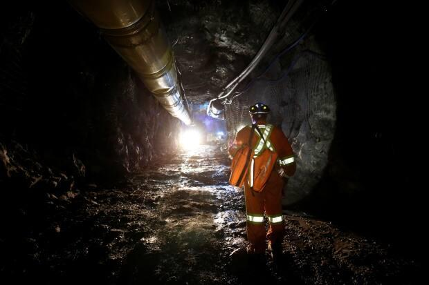 The mineral industry is a highly productive sector, in that a single working hour can contribute hundreds of dollars to GDP.