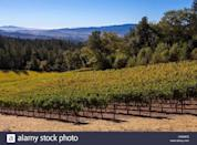 """<p> Situated atop Howell Mountain is <a href=""""https://www.cadewinery.com/"""" rel=""""nofollow noopener"""" target=""""_blank"""" data-ylk=""""slk:Cade Estate"""" class=""""link rapid-noclick-resp"""">Cade Estate</a>, a winery that specializes in Cabernet Sauvignon and comprises two distinct locations: the first-ever LEED Gold-certified estate winery in Napa Valley, designed by architect Juan Carlos Fernandez, and a historic stone winery, built in 1886. Tours and tastings are available by reservation only. </p>"""