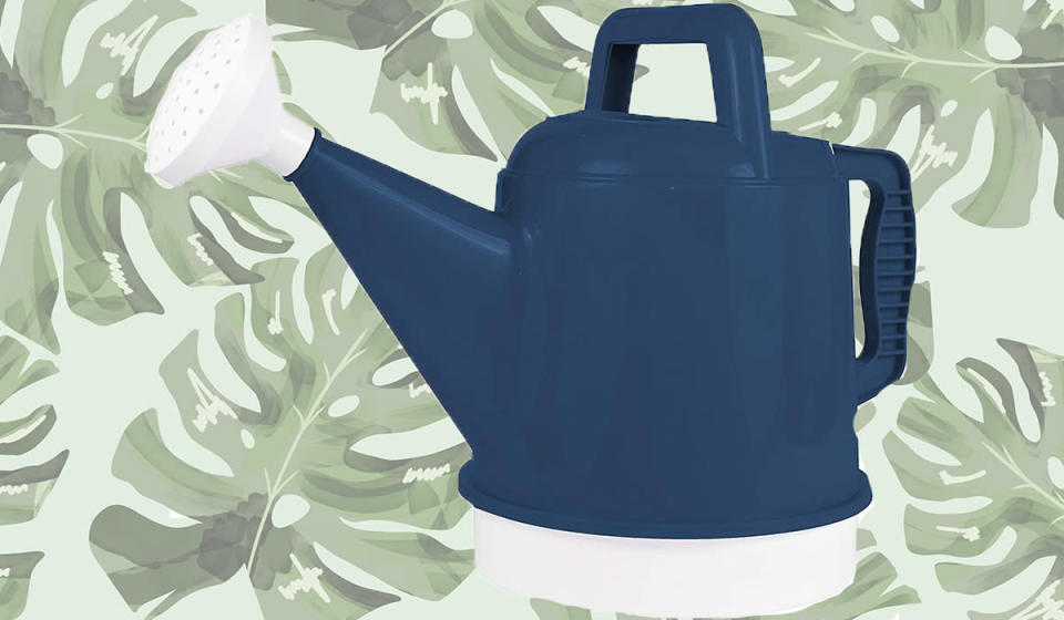Bloem Deluxe Watering Can (Photo: Amazon)