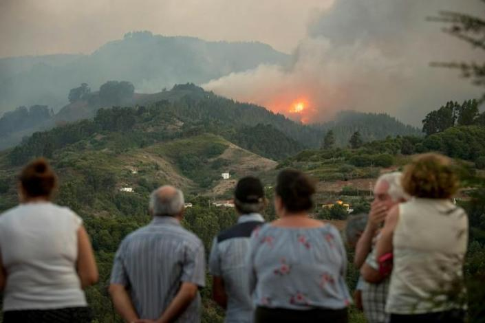 Residents on the island of Gran Canaria will be allowed to return home as a massive wildfire is subdued by firefighters (AFP Photo/DESIREE MARTIN)