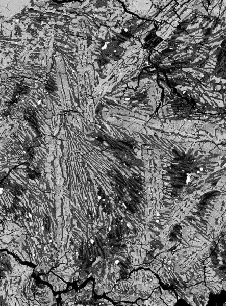 Crystal structure in the eucrite meteorite ALHA81001. The image represents a 0.5 by 0.35 mm section of the meteorite under backscatter electron microscopy.