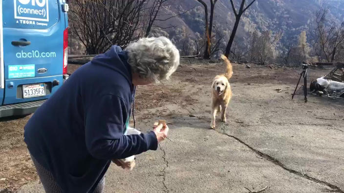 Madison, an Anatolian shepherd dog, is reunited with his owner, Andrea Gaylord, after the homeowner was allowed back to check on her burned property in Paradise, Calif., on Dec. 7, 2018. (Photo: Shayla Sullivan via AP)