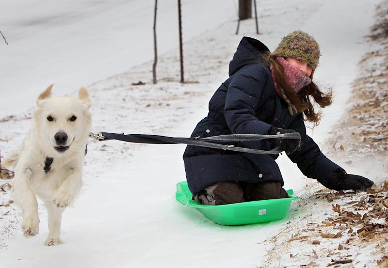 Mila Olias, 10, and her dog Momo take a sled run down a sidewalk Sunday, March 2, 2014, in Richmond Heights, Mo. A winter storm packing high winds, ice and heavy snow threatened to create hazardous driving conditions across Kansas and Missouri, accompanied by wind chills approaching 25 below zero in some areas. (AP Photo/St. Louis Post-Dispatch, David Carson)