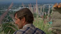 <p>Harry Dean Stanton, 14 July 1926 – 15 September 2017<br>Best known for: Paris Texas, Repo Man </p>