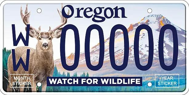This plate proposed by the Oregon Wildlife Foundation features a mule deer and Mount Hood.