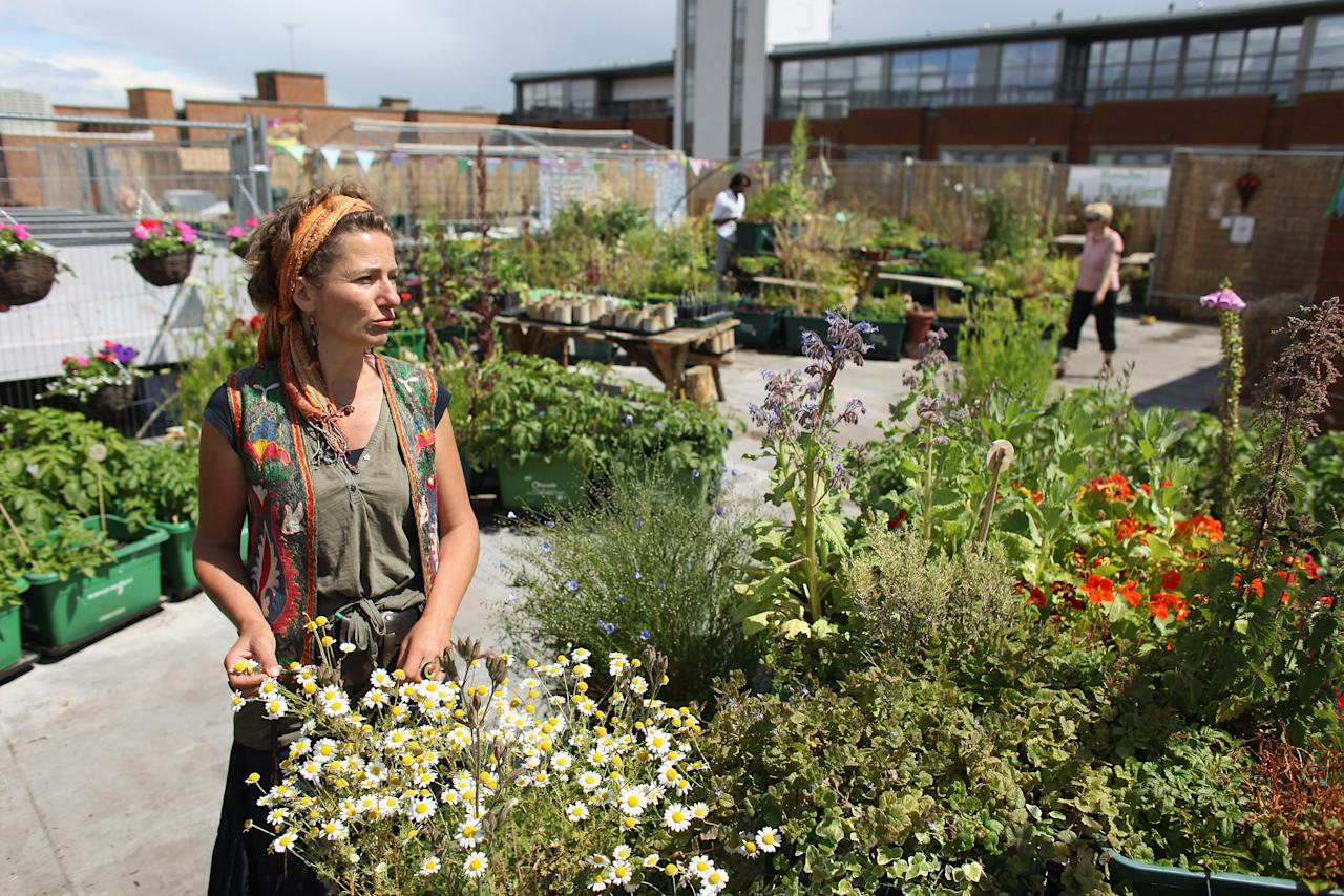 LONDON, ENGLAND - JUNE 09:  Azul Thome, the co-founder of 'Food from the Sky,' stands in the roof garden above a supermarket in Crouch End on June 9, 2011 in London, England. The roof garden, the produce from which is sold in the Budgens supermarket below it, is participating this year in the Open Garden Squares Weekend on June 11 and 12th. The Open Garden Squares Weekend lets members of the public purchase a ticket to give them access to over 200 gardens across the capital, many of which are usually private.   (Photo by Oli Scarff/Getty Images)