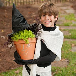 "<p>Keep it simple for children. Use a 17"" terra cotta pot, Purple Pixie lorapetalum for the hair and sedum for the face. Plant the loropetalum towards the back and sedum in the front. Place a barbecue skewer in the center and add a witch's hat. After Halloween, parents can plant both sedum and pixie loropetalum in their landscape.</p>"