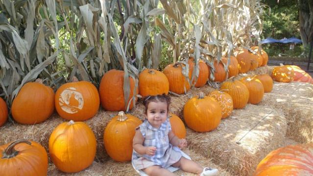 "<p>Dream was happy to make the trek to a pumpkin patch <a href=""https://twitter.com/robkardashian?ref_src=twsrc%5Egoogle%7Ctwcamp%5Eserp%7Ctwgr%5Eauthor"" rel=""nofollow noopener"" target=""_blank"" data-ylk=""slk:with dad Rob Kardashian"" class=""link rapid-noclick-resp"">with dad Rob Kardashian</a>. Naturally, she wore gingham. (Photo: Twitter/Rob Kardashian) </p>"