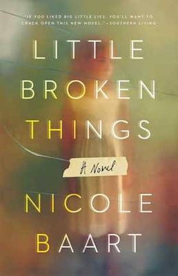 Picture of Little Broken Things Book