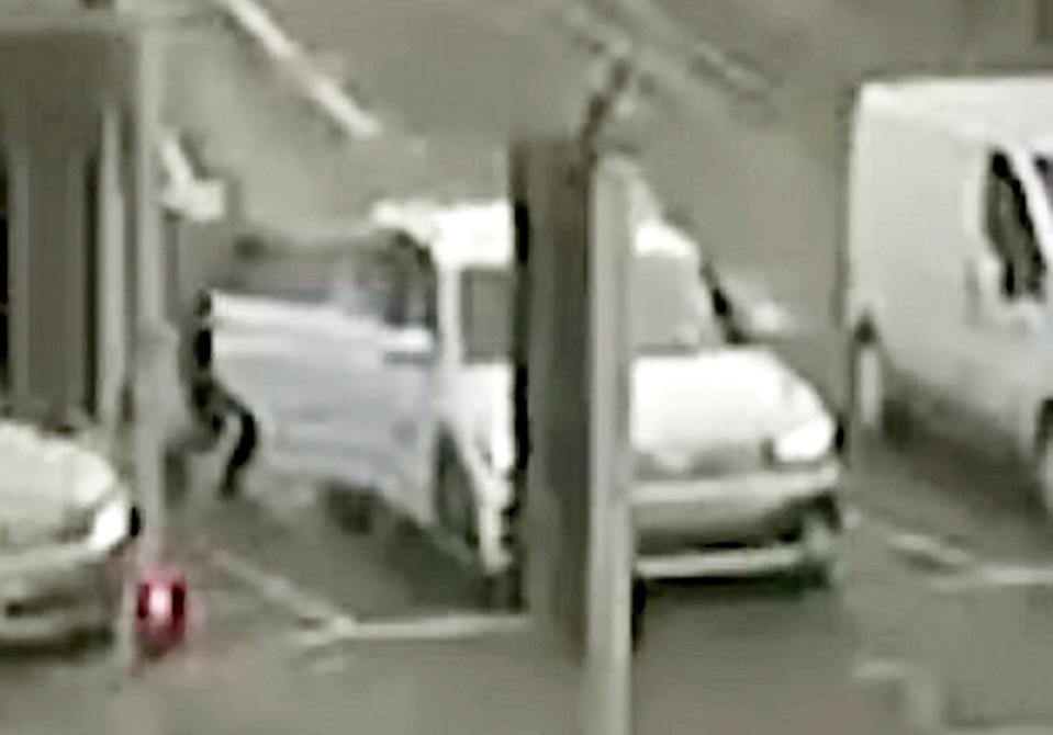 A robbery victim has described the moment a complete stranger crept into the back seat of her car while she was stuck in traffic like 'a scene from a horror movie' (swns)