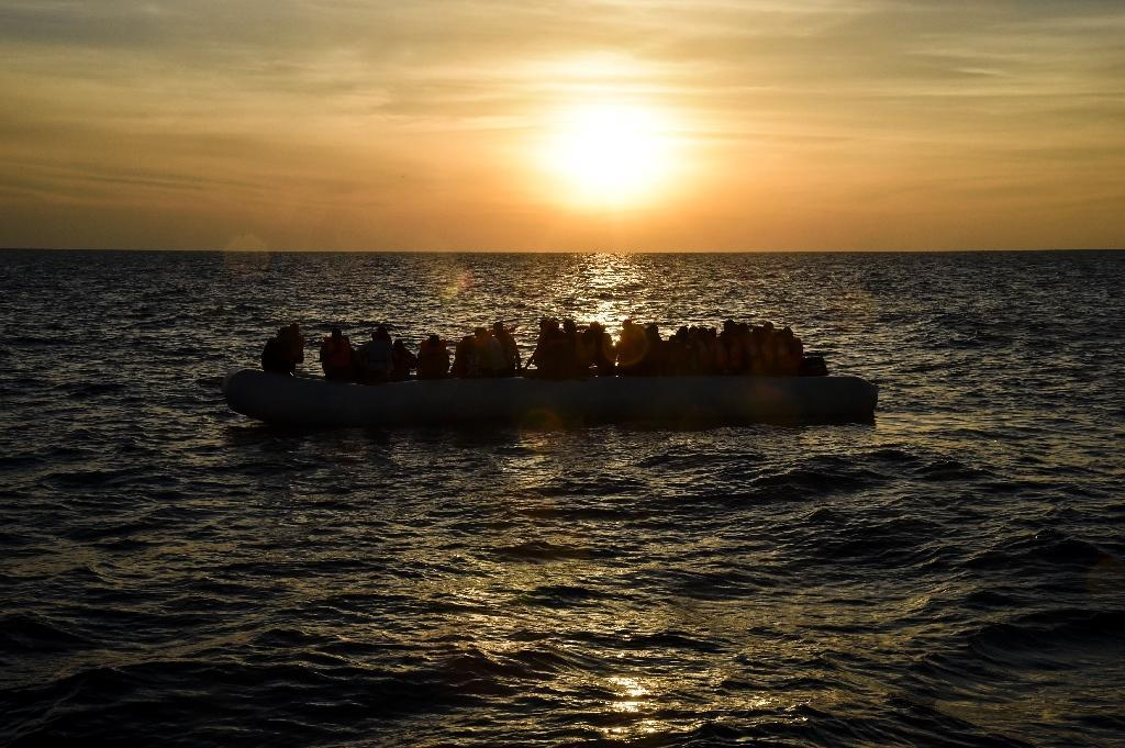 Romanian authorities have now intercepted four ships in the Black Sea since mid-August, sparking fears of a new migrant route to Europe (AFP Photo/Andreas SOLARO)