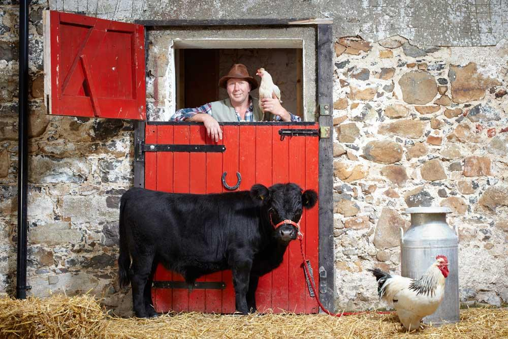 Archie, the world's Shortest Bull (30 inches (76.2 cm) from hoof to withers)