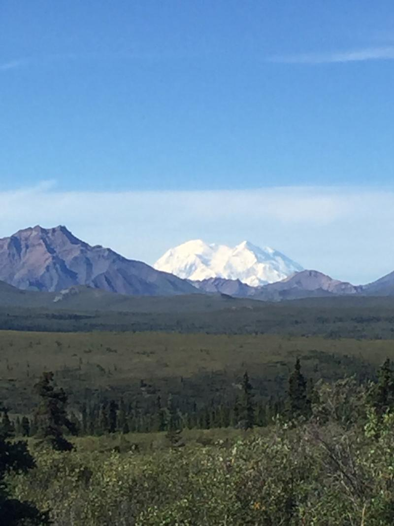 Only 30 percent of visitors to Denali actually see the mountain. (Courtesy of Ann Brenoff)
