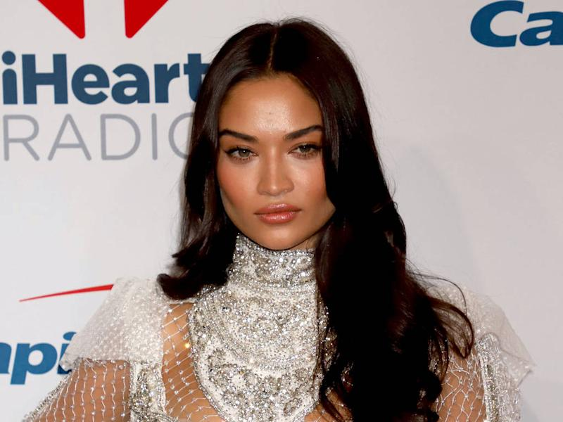 Shanina Shaik wishes she 'could burn pictures' from first years in New York