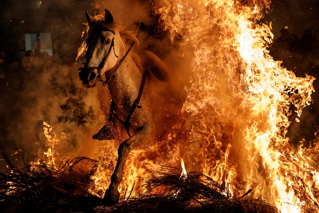 "A man rides a horse through flames during the annual ""Luminarias"" celebration on the eve of Saint Anthony's day, Spain's patron saint of animals, in the village of San Bartolome de Pinares, northwest of Madrid, Spain, January 16, 2018. Picture taken January 16, 2018. REUTERS/Juan Medina     TPX IMAGES OF THE DAY"