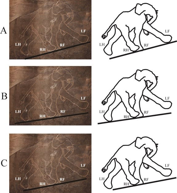 This prehistoric elephant drawing from Libya is shown with three interpretations of where the ground is meant to be. In each case, the gait is incorrect.