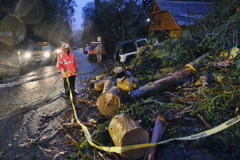 Department of Water and Power employees work in the pouring rain to clear a fallen tree from a road in the Hollywood hills in Los Angeles, Thursday, Jan. 17, 2019. The latest in a series of Pacific Ocean storms pounded California with rain and snow Thursday, prompting officials to put communities on alert for mudslides and flooding and making travel treacherous. (AP Photo/Richard Vogel)