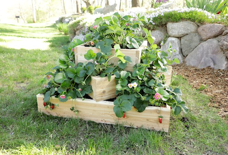 how to build tiered strawberry planter