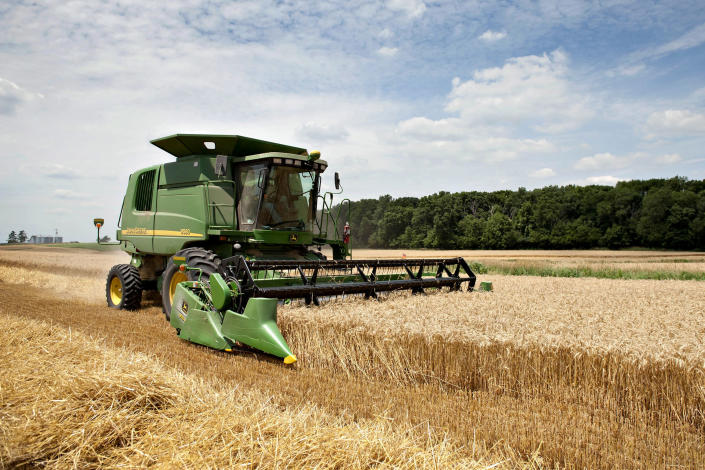Wheat rises as corn gains may boost demand on livestock farms (Daniel Acker / Bloomberg via Getty Images file)